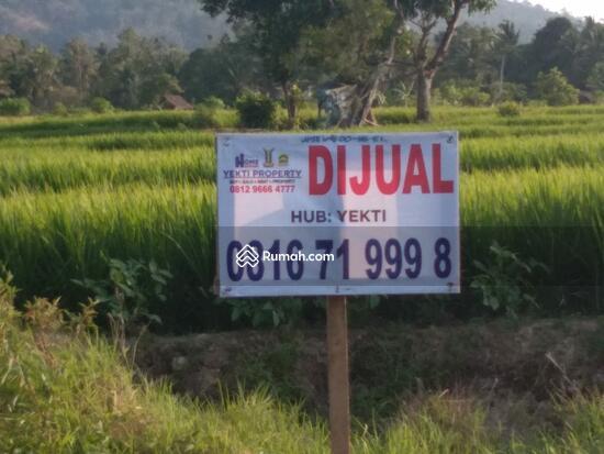 Tanah Lampung  93046643