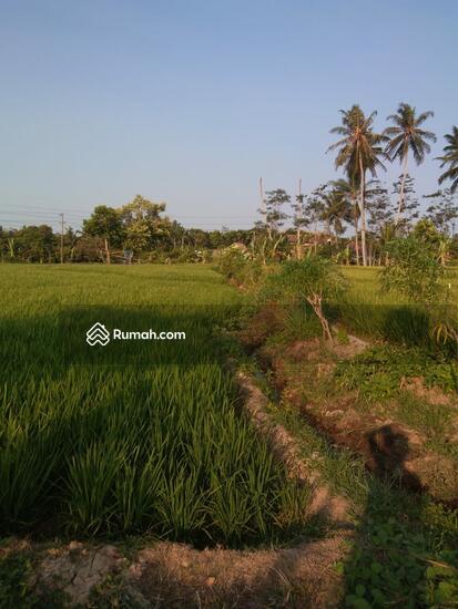 Tanah Lampung  93046646