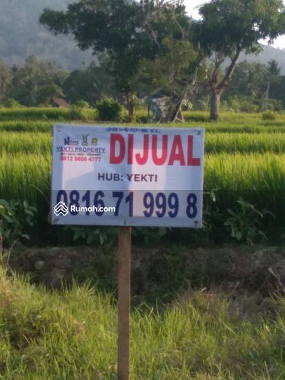 Tanah Lampung  93046647