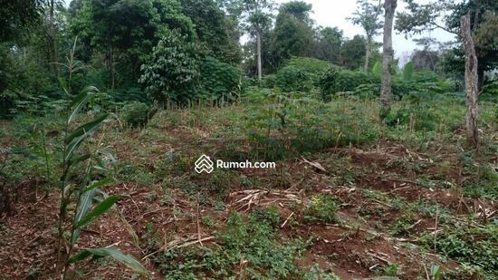 Tanah Murah di Jami Desa Sukajaya, Tamansari Bogor  95236464