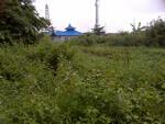 tanah gang utama jln.pramuka