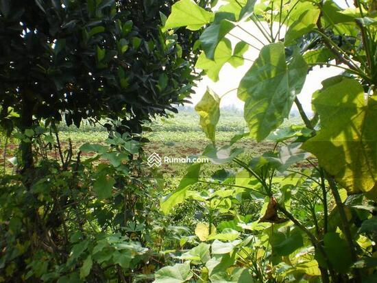 Desa Mekar Wangi  1491854
