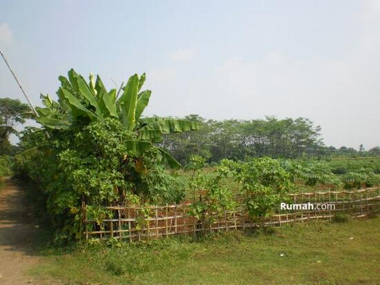 Desa Mekar Wangi  1491860