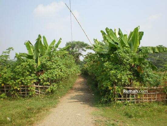 Desa Mekar Wangi  1491863