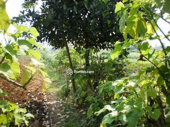 Desa Mekar Wangi  1491887